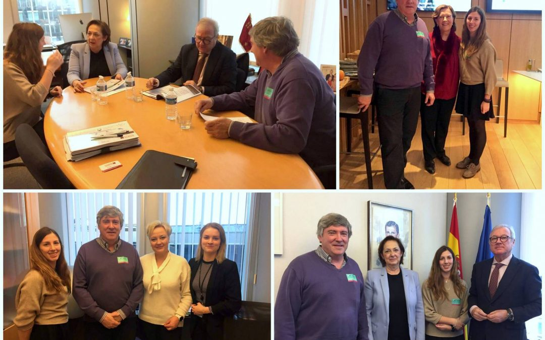 The SSPA network meets with the vice-president of the European Parliament and MEPs for depopulation